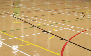 Sports Hall Availability for Single or Block Bookings